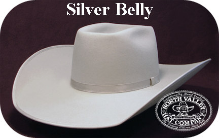 silver-belly-hat